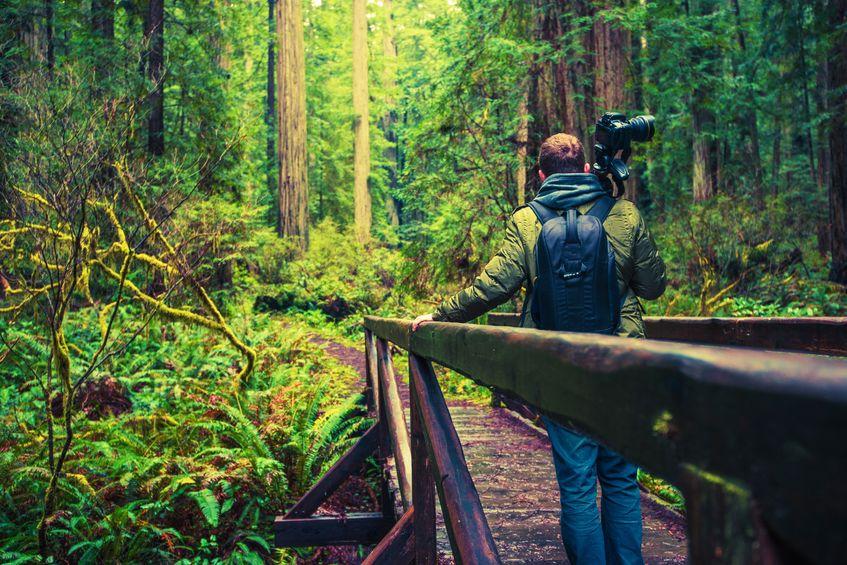A természetfotósok kiváló kelléke a fotós táska